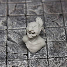 Picture of print of Goblin Explorer Bust