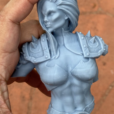 Picture of print of female orc warrior bust