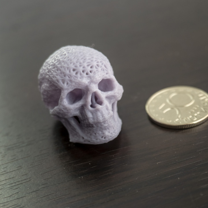 Meshed Skull