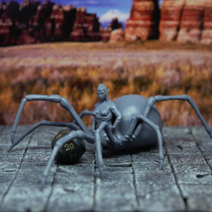 Drider - Tabletop Miniature