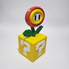 Picture of print of Super Mario Fire or Ice Flower with Switch card storage