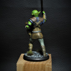 Picture of print of Goblin Fighter - Miniature