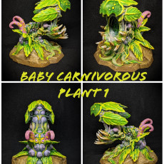 Picture of print of BABY CARNIVOROUS PLANT OPENED