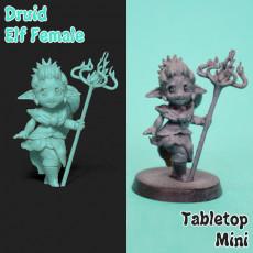Female Druid Elf Mini