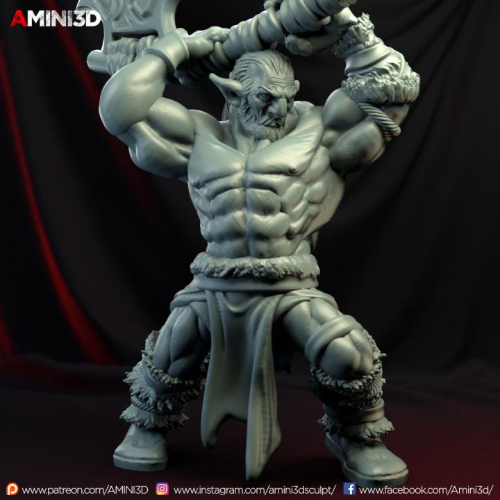 Firbolg02.Barbarian