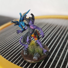 Picture of print of Dragon Sorceress
