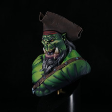 Picture of print of Pirate Ork Captain Bust