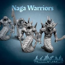 Naga Warroirs