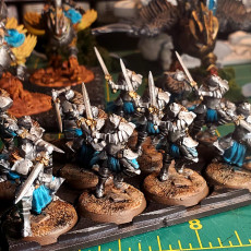Picture of print of Kingsguard Knights on Foot x2 (32mm miniatures)