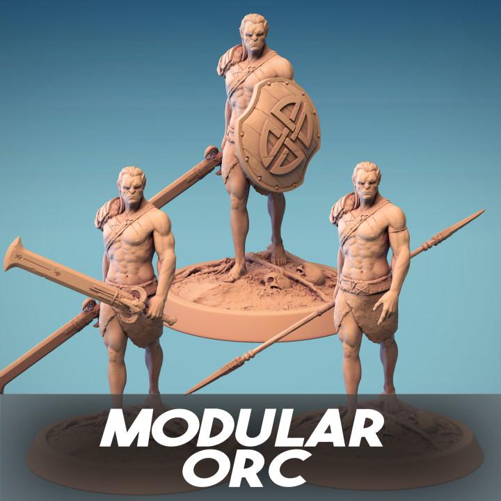 Modular Orc