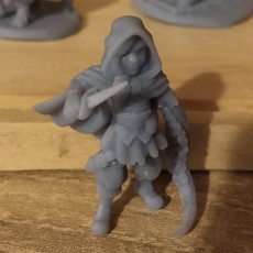Picture of print of Annalissa, Human Arcane Trickster