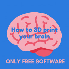 How to 3D print Your Brain