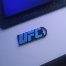 UFC keychain