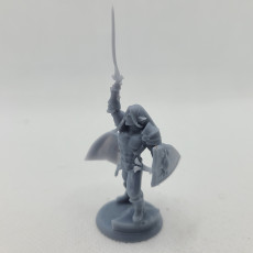 Picture of print of Alistair Glimmergaunt the Elf Paladin