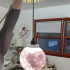 Moon Lamp Globe image