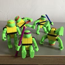 TMNT Action Figures