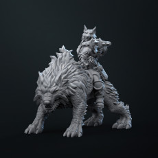 Orc ranger on warg