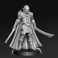 Evendil Gennala - Elf - 32mm - DnD -