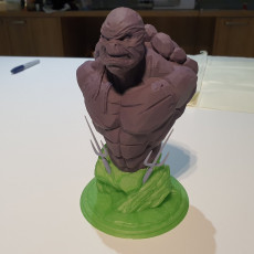 Picture of print of Raphael fanart LowPoly