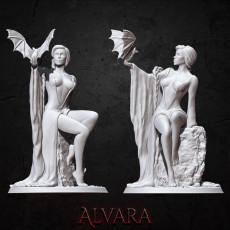 Alvara - Standard License