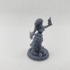 Picture of print of Troubles in Tavern - Complete Bundle (7 Heroes)