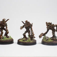 Picture of print of Twig blight