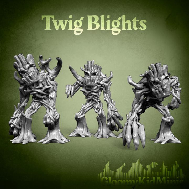 Twig blight