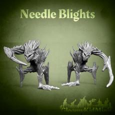 Needle blight