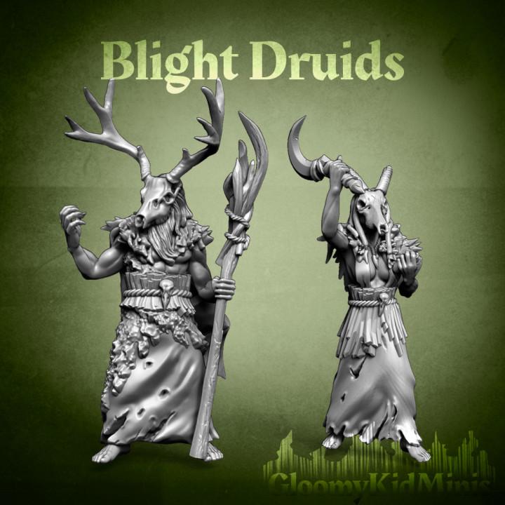 720X720-druids-insta.jpg