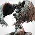 Justine´s Eagle image