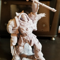 Picture of print of Wolffang (Wargame Scale)
