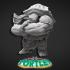 Teenage Mutant Ninja Tortle - Rappyfel Miniature - Pre-Supported image