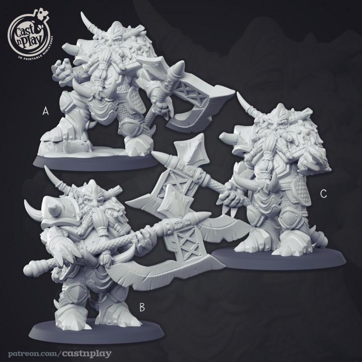 Dwarven Commanders - Kickstarter Add-on's Cover