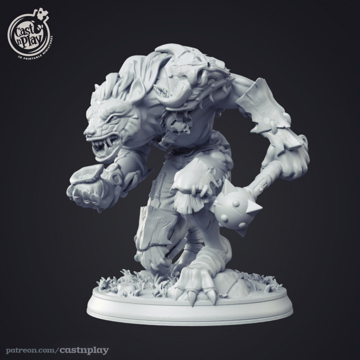 Gnoll Leader - Kickstarter Add-on's Cover