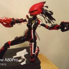 BASHIE ROBOT