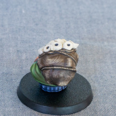 Picture of print of Toilet Paper Merchant Miniature