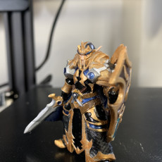 Picture of print of Elf paladin