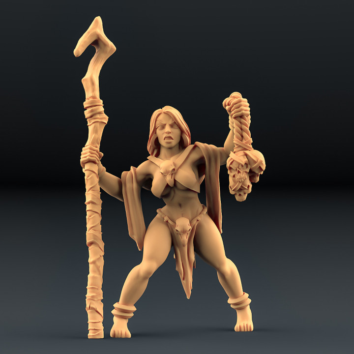 Blood Priestesses - 3 Units (AMAZONS! Kickstarter)