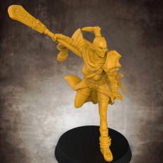 Female RPG Monk - Human, Elf, Half Orc and Tiefling