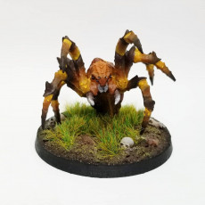 Giant Spiders - 3 Units (AMAZONS! Kickstarter)