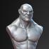 Academic Bust- Human Brute image