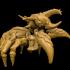 Big Bug image