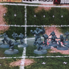 Picture of print of Human Team 16 miniatures Fantasy Football 32mm