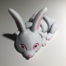 Picture of print of Articulated Bunny