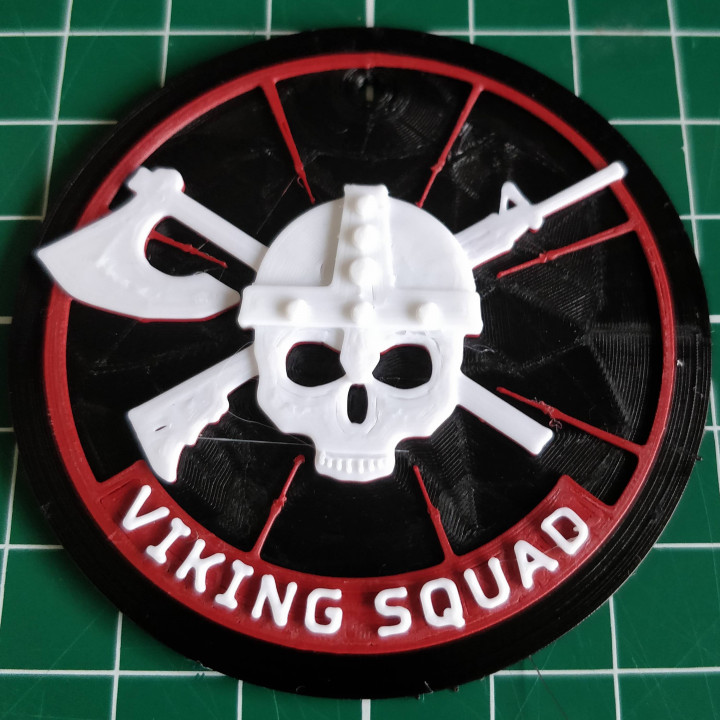 Custom logo viking squad