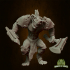Gnoll Warrior image