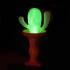 The Cactus Lamp image