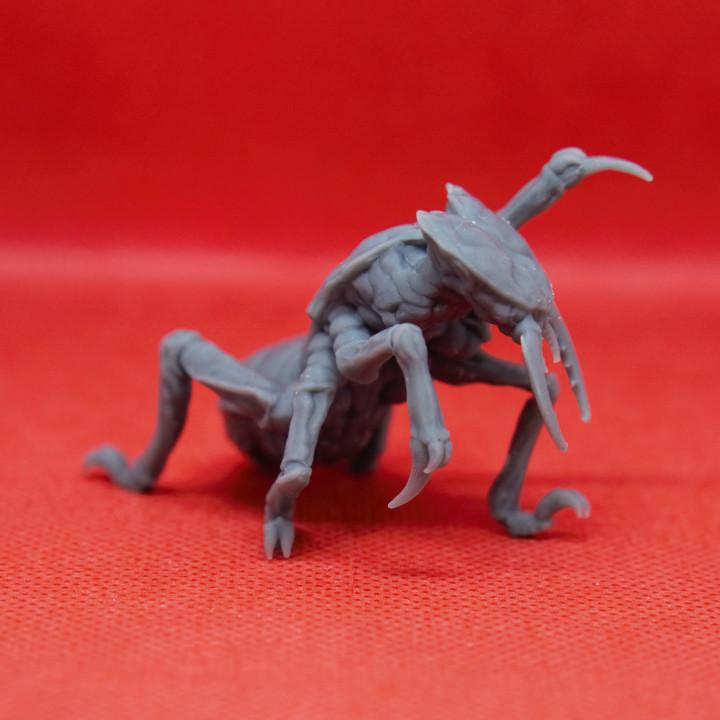 Ankheg - Tabletop Miniature
