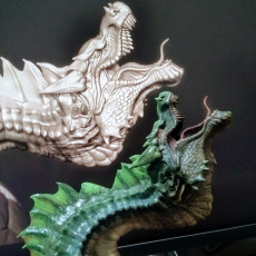 Picture of print of New Dragon