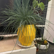 lowpoly pineapple planter with a hole